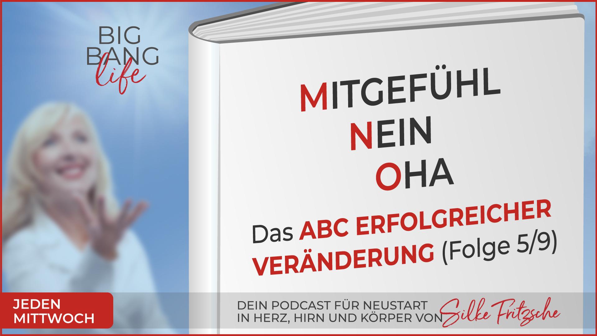 Der Big Bang life Podcast mit Silke Fritzsche - Mitgefühl, Nein, Oha