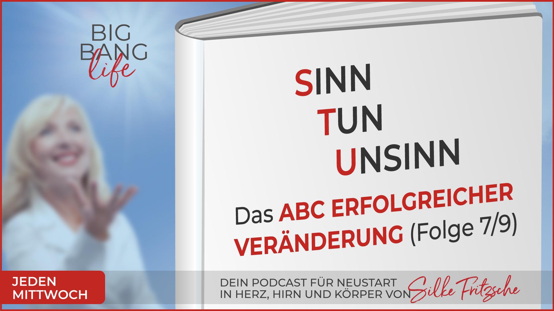 Der Big Bang life Podcast mit Silke Fritzsche - Sinn, Tun, Unsinn